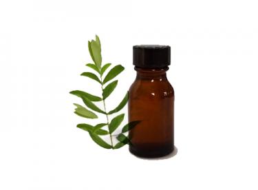 Çay Ağacı Yağı ile Yara Tedavisi