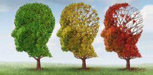 hindistan cevizi yağı ile alzheimerin etkileri ve belirtilerini geriletebilirsiniz